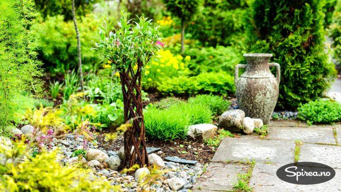 Wormdals hage er en blanding av gammelt og nytt. Denne flettede pilen ble plantet i fjor.