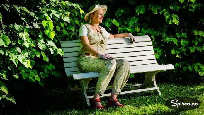 En deilig benk i hagen.