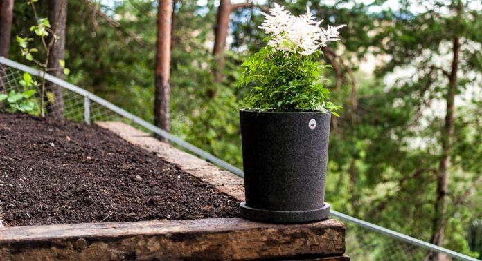 I denne krukken har vi plantet Astilbe (arendsspir).