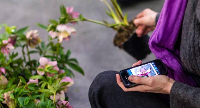 Bloggkollega Anne i Moseplassen var på plass og publiserte nyanskaffelsene rett på Instagram.