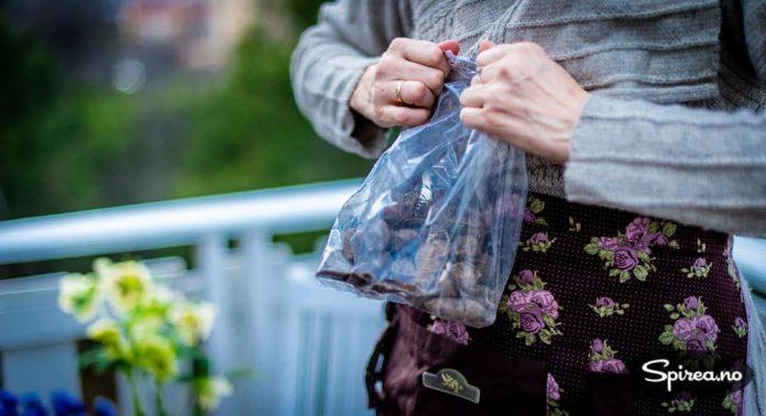 Georgineknoller selges i hagesentrene om våren.