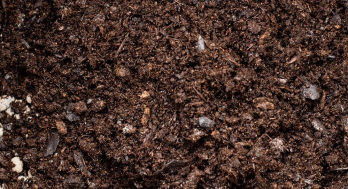 Jord er ikke bare jord, det kan være stor forskjell på kvaliteten.