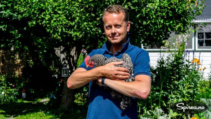 To høner bor også i kolonihagen denne sommeren.