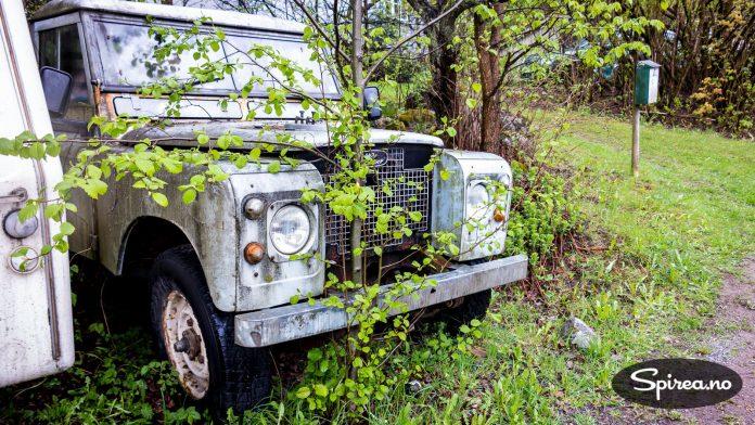 Denne Land Roveren står i vårt nabolag. Og der har den stått lenge. Sjekk treet som har funnet seg veien GJENNOM støtfangeren...