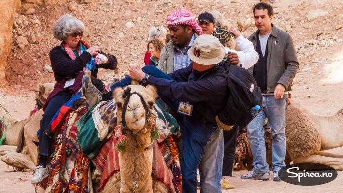 Beduinene vil ha turistene til å kjøpe en tur på kamelryggen. Vi valgte å avstå, men det så jo litt morsomt ut. Men du verden så vondt det lukter av kameler!