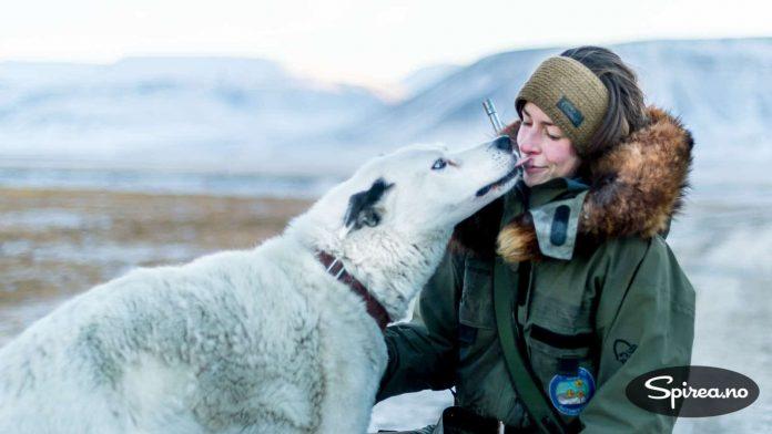 For å få lov til å dra mer enn 400 meter fra Longyearbyen, må du ha med bevæpnet vakt. Vår isbjørnvakt hadde en svært hengiven hund med seg.