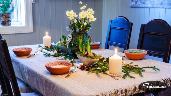 Du kan sette julerosen på bordet mens dere spiser julegrøt, men blomstringen vil vare lenger hvis du setter den kaldt om natta.