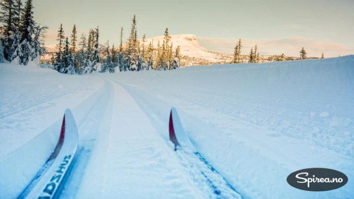 Trikken til Skeikampen: Blå Swix-føre og nykjørte spor gjør skituren til en drøm.