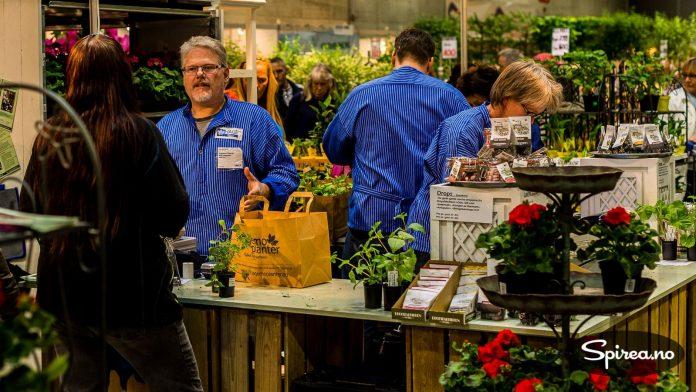 Hagemo gartneri er spesialister på pelargonia, og faste utstillere på Hagemessen.