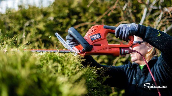 Beskjæring av hekk er hardt arbeid, og du må sørge for å stå stødig når du klipper.
