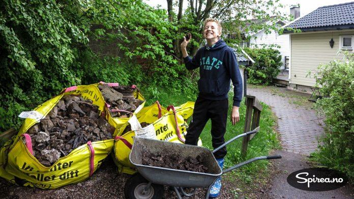 Henrik er ivrig på å hjelpe til med å kjøre vekk stein, det er nemlig betalt styrketrening!