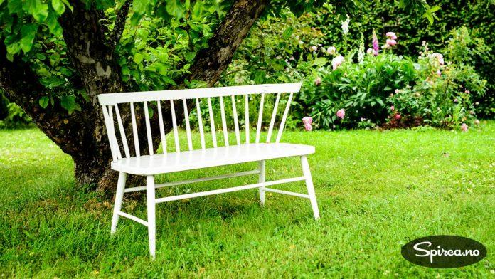 Under epletreet er det fint å hvile i skyggen på den hvitmalte benken.