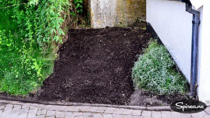 Før du planter bør det fylles på et lag god jord.