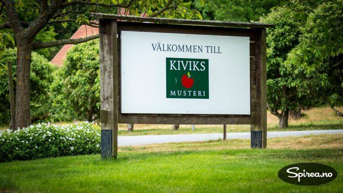 Kiviks Musteri produserer vin og cider midt i Sveriges eplelandskap i Skåne.