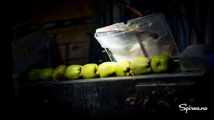I visningsfabrikken kan du se hvordan moderne eplemostproduksjon foregår.