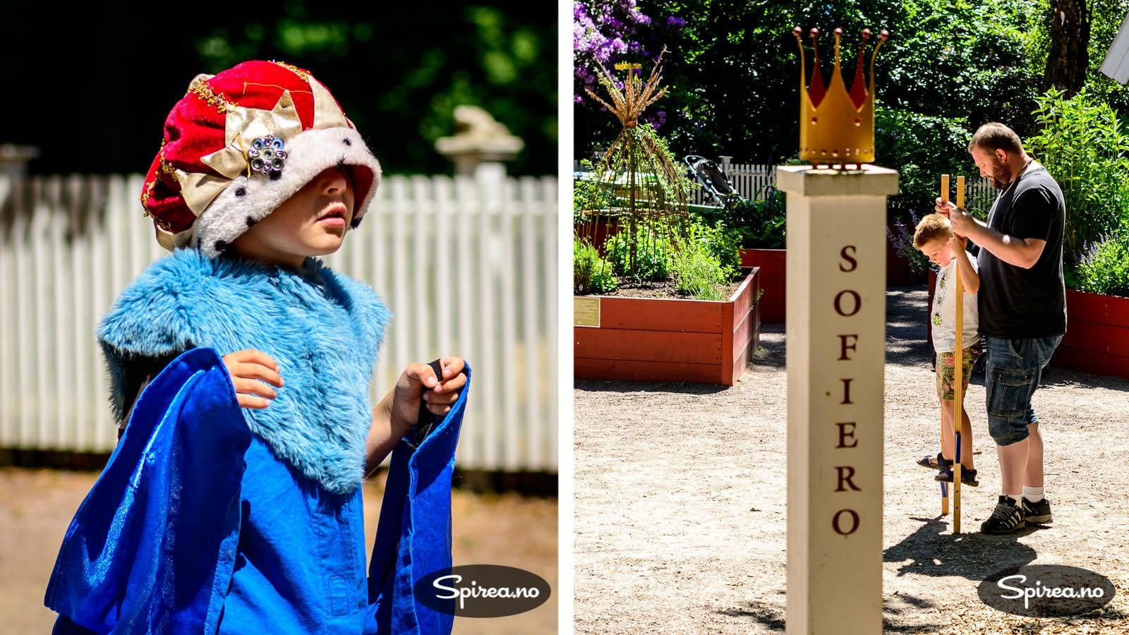 dronning og konge krone