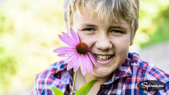 Andreas plukket seg en nydelig purpursolhatt i høsthagen vår.