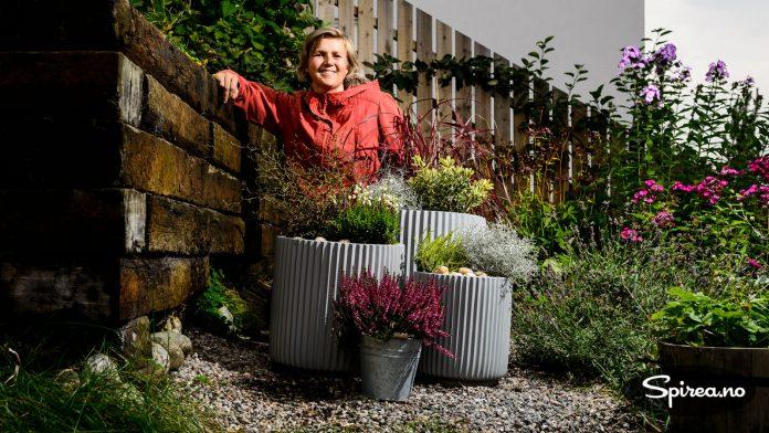 Det er fortsatt stauder som blomstrer i hagen vår, men Bjørnhild har også plantet noen flotte høstplanter i krukker.