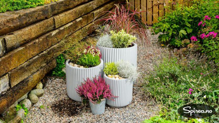 Utvalget av kule høstplanter gjør at det er morsomt å plante noe nytt i krukkene!