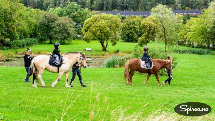 I forbindelse med ByDyrk-festivalen fikk barna lov til å prøve hester fra Alna ridesenter.