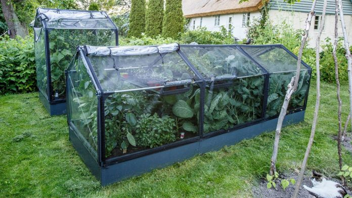 GrowCamp er modulbasert høybed med overbygning i ulike størrelser, spesielt beregnet til grønnsakdyrking.