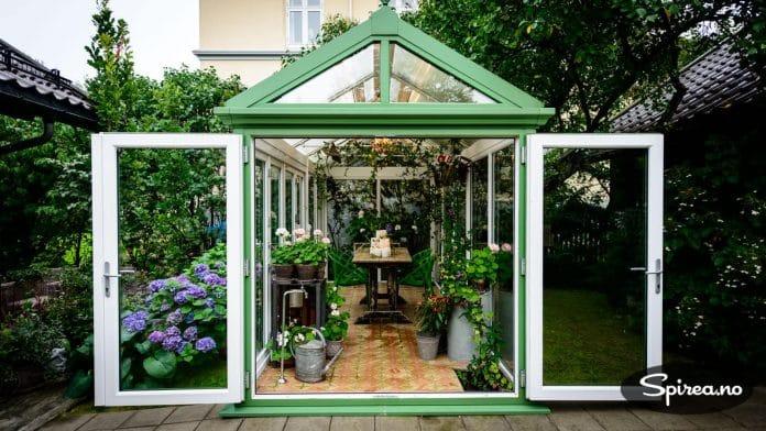 Drivhuset på Nøtterøy brukes ikke til dyrking av tomater og agurker, men som en hagestue fylt av vakre, blomstrende planter. Lampene i taket er arvet av Finns farmor.