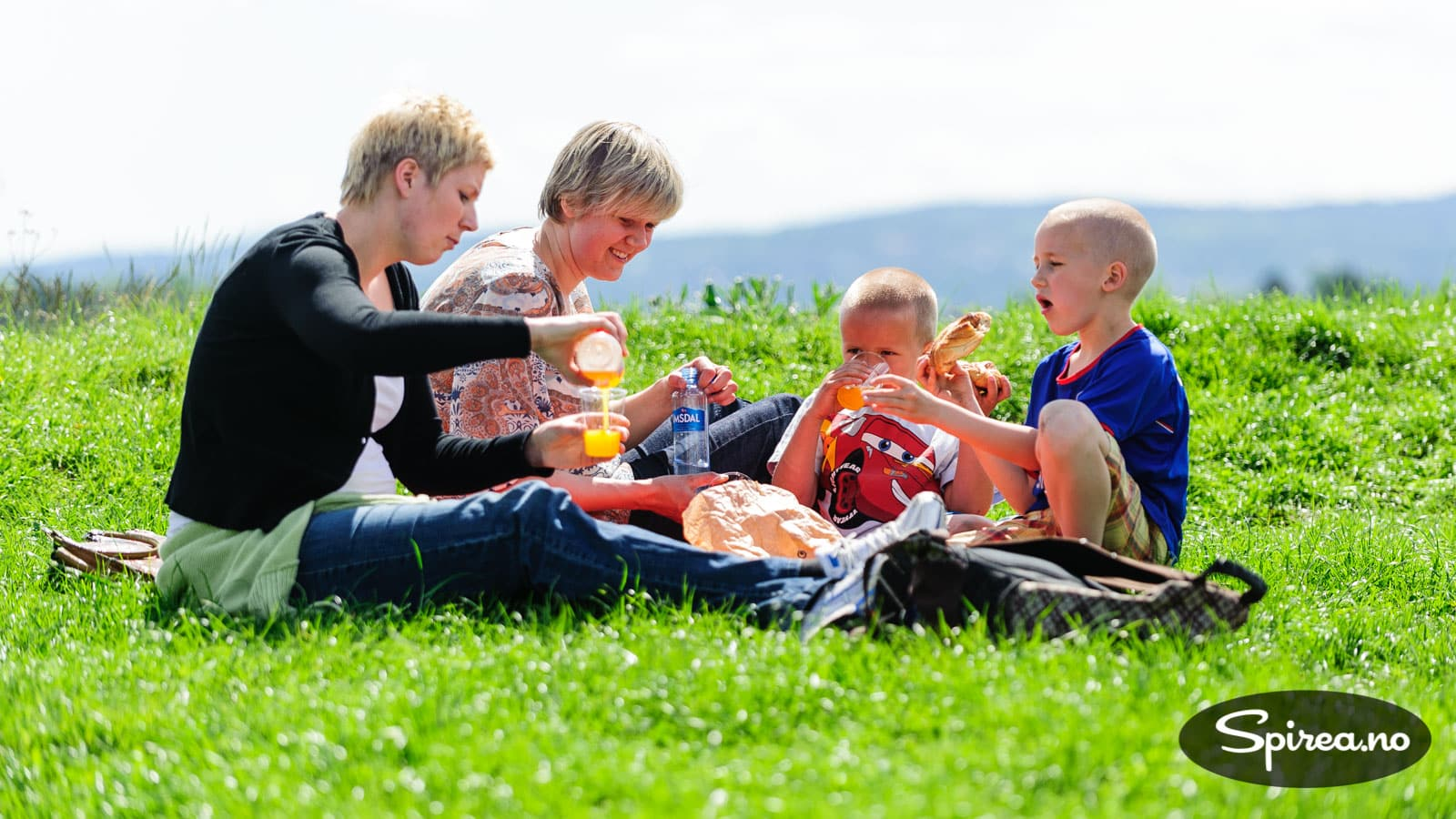 Kari Diesen Det Hender Så Mangt På Hovedøen - I Min Ungdoms Vår